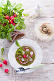 Green radish soup Royalty Free Stock Images