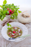Green radish soup Stock Images