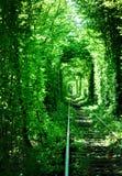 Green railway tunell Stock Photos