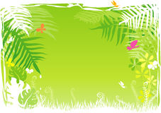 Green rainforest background Royalty Free Stock Photo