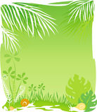 Green rainforest background Stock Image