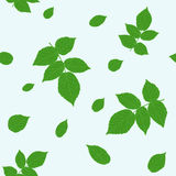 Green raspberry leaves. Traditional colors. Seamless pattern. Royalty Free Stock Photography