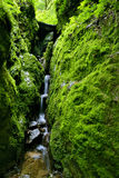 Green Ravine and Waterfall Stock Image