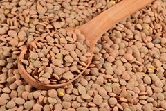 Green raw lentil in a spoon Stock Photos