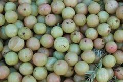Green raw unripe gooseberry Stock Photos