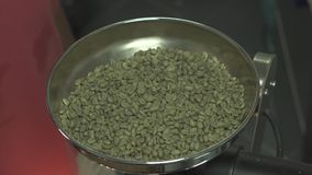 Green raw unroasted coffee beans in roaster close up. Green raw unroasted coffee beans in roaster stock video footage