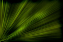 Green rays Stock Photo