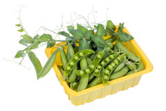 Green real fresh pea in box  isolated Royalty Free Stock Image