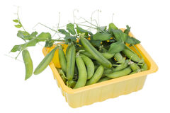 Green real fresh pea in box  isolated Stock Photos