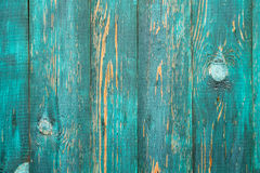 Green Real Wood Texture Background. Vintage and Old