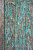 Green Real Wood Texture Background. Vintage and Old Royalty Free Stock Images