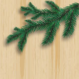 Green realistic fir tree branch and its shadow. On the background of wood. Pine board. illustration. Green realistic fir tree branch and its shadow. On the Stock Image