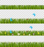 Green realistic grass borders set with colorful flowers and butt. Erflies  on transparent background. Spring or summer vector kit, template, clip art, frame Royalty Free Stock Photography