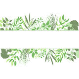 Green rectangle frame with collection of plants. Silhouette of branches  on white background Stock Photos