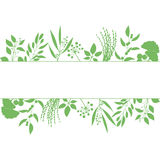 Green rectangle frame with collection of plants. Silhouette of branches  on white background Stock Photo