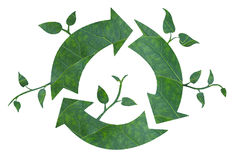 Green Recycle. Royalty Free Stock Photography