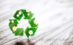 Green recycle sign with daisy flower on wooden desk. 3D illustra Stock Photo