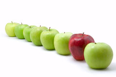 Green and red. Apples on white royalty free stock photography