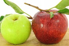 Green and red apple fruit Stock Photography