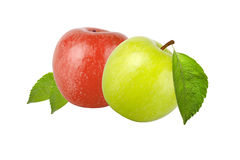 Green and red apple with leaf isolated on white background Stock Images