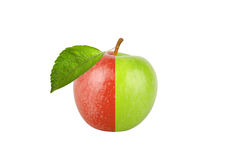 Green and red apple with leaf isolated on white background Royalty Free Stock Photos