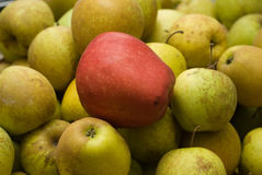 Green and red apples.  Royalty Free Stock Images