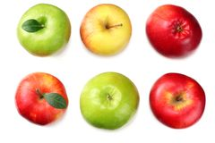 green and red apples isolated on white background. top view stock photo