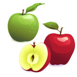 Green and red apples with leaves. Vector Illustration of Green and red apples with leaves Royalty Free Stock Photo