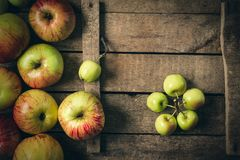 Green and red apples on rustic  table. toned photo. Stock Image