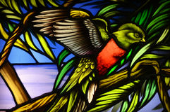 Green and Red Biird Stained Glass Stock Photo