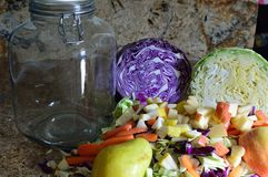 Green and Red Cabbage coarsely chopped baby carrots sliced, chopped apple and pear, gallon jar stock images