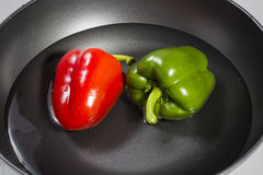 Green and red capsicum Royalty Free Stock Photography