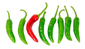Green and red chili pepper isolated. On a white background Royalty Free Stock Photo