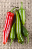 Green and red chili pepper Stock Images