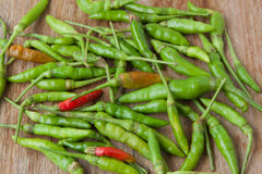 Green and red chili peppers Stock Images