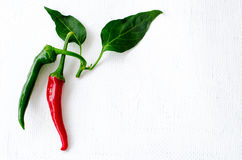 Green and red chilli pepper on white background. Food concept with copy space Royalty Free Stock Photos
