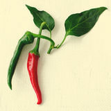 Green and red chilli pepper on white background. Food concept with copy space, toned Royalty Free Stock Photo