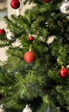Green and Red Christmas Tree royalty free stock photo