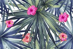 Free Green Red Exotic Pattern. Stock Images - 161461094