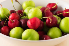Green and Red Fruit plate with good light close up Stock Images