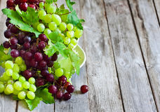 Green and red grape background Stock Photo