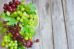 Green and red grape background Royalty Free Stock Images