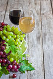 Green and red grape Royalty Free Stock Photos