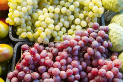 Green and red grapes at fruit market. Royalty Free Stock Image