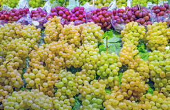 Green and red grapes for sale Royalty Free Stock Photo