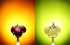 Green and red grapes on a teaspoon. And a colored background Royalty Free Stock Photography