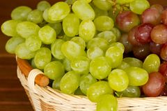 Green and red grapes in the wicker basket. Green and red grapes in a wicker basket Stock Images