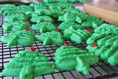 Green Christmas Tree Spritz Cookies. Green and red holiday tree spritz cookies stock photography
