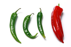 Green and red hot chili peppers. Green and Red chili peppers isolated on white background Stock Photos