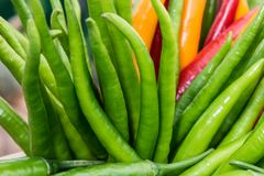 Green and red hot chili peppers Stock Photos